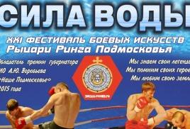 XXI фестиваль боевых искусств Рыцари Ринга Подмосковья 2017